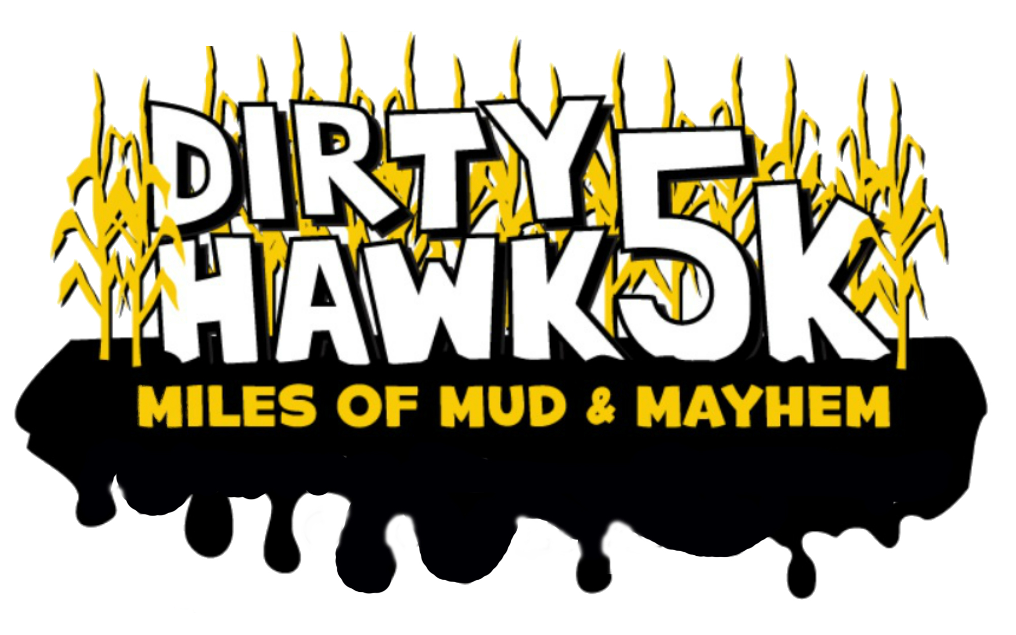 Dirty Hawk Dash Logo
